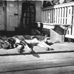 Dog lying on a porch